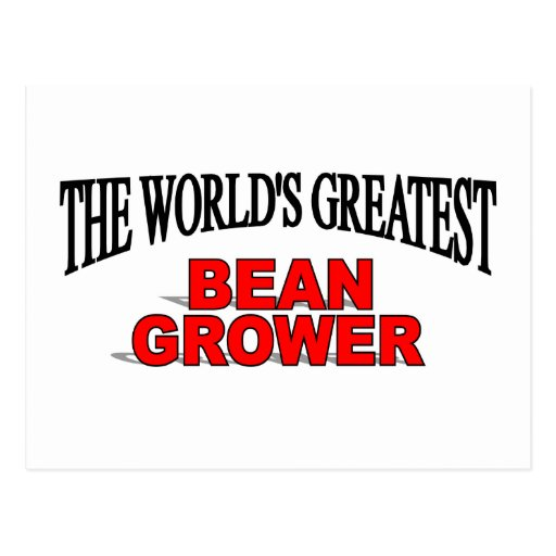 The World's Greatest Bean Grower Post Cards
