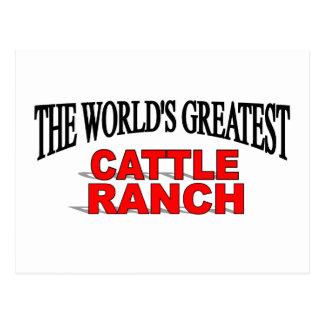 The World's Greatest Cattle Ranch Post Card