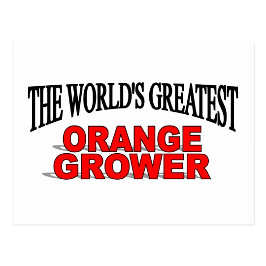 The World's Greatest Orange Grower Postcard