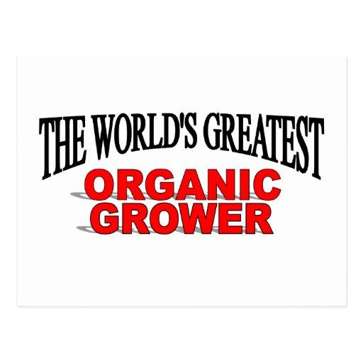 The World's Greatest Organic Grower Post Card