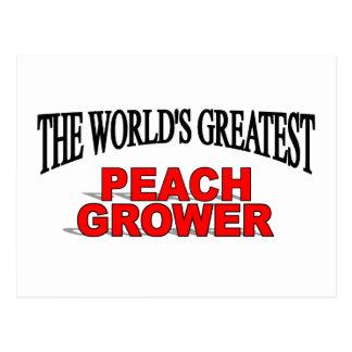 The World's Greatest Peach Grower Postcard