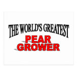 The World's Greatest Pear Grower Post Card