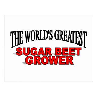 The World's Greatest Sugar Beet Grower Postcard