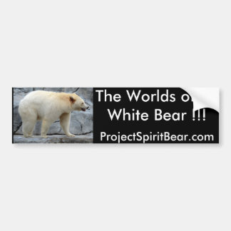 The Worlds other White Bear!!! Bumper Sticker