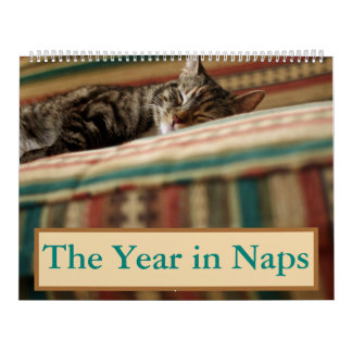 The Year in Naps Calendar