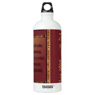 The Year of the Snake, 2013, Happy New Year in Chi Aluminum Water Bottle