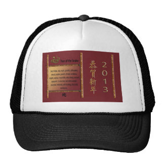 The Year of the Snake, 2013, Happy New Year in Chi Trucker Hat