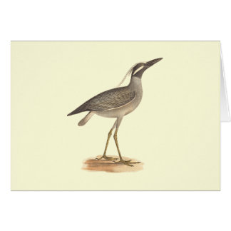 The Yellow-crowned Night Heron(Ardea violacea) Greeting Card