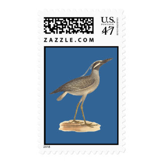 The Yellow-crowned Night Heron	(Ardea violacea) Stamp