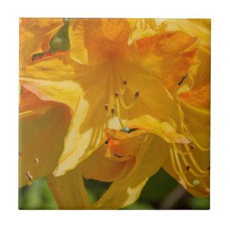 The Yellow Wildflower Ceramic Tile