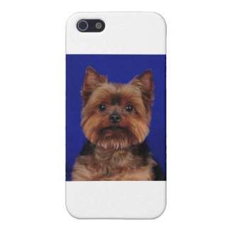 The Yorkie iPhone SE/5/5s Case