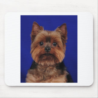 The Yorkie Mouse Pad