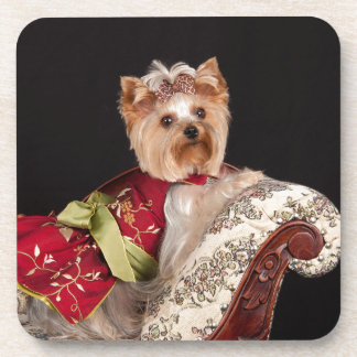 The Yorkie Queen Coasters