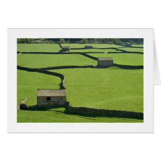 The Yorkshire Dales - Barns and walls Greeting Cards