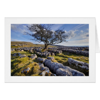 The Yorkshire Dales - Limestone Country Greeting Cards