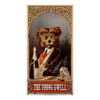 The Young Swell Poster