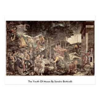 The Youth Of Moses By Sandro Botticelli Postcard