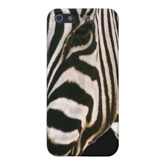 the zebra cover for iPhone 5