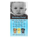 Thee Labradors Blue Birthday Invitation Photo Cards