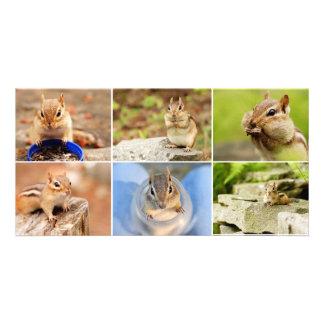 Theo el collage del Chipmunk del amigo Tarjetas Con Fotos Personalizadas