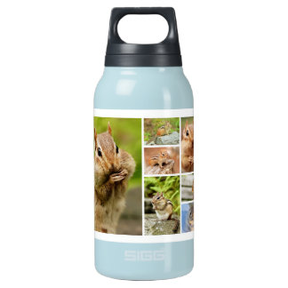 Theo the Amigo Chipmunk Collage Insulated Water Bottle