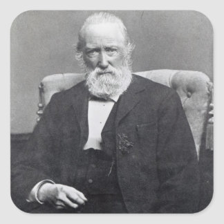Theodor Storm, c.1886 Square Sticker