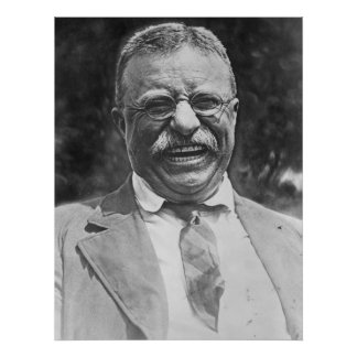 Theodore peluche Roosevelt Posters