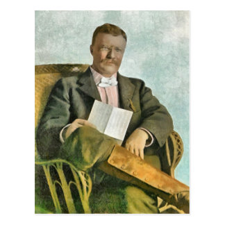 THEODORE ROOSEVELT AT OYSTER BAY POSTCARD