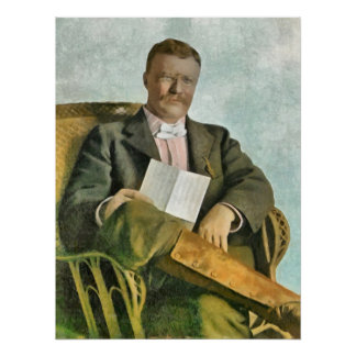 THEODORE ROOSEVELT AT OYSTER BAY POSTER
