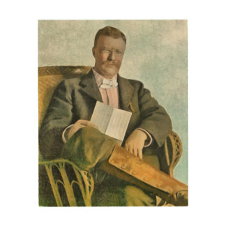 THEODORE ROOSEVELT AT OYSTER BAY WOOD CANVAS