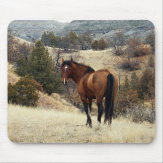Theodore Roosevelt National Park Mousepad