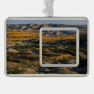 Theodore Roosevelt National Park Silver Plated Framed Ornament