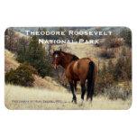 Theodore Roosevelt NP Souvenir Magnet