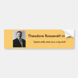 Theodore Roosevelt para el presidente Pegatina Para Auto