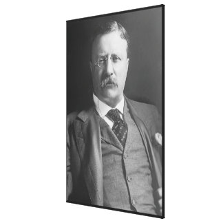 THEODORE ROOSEVELT Portrait by Harris and Ewing Canvas Print