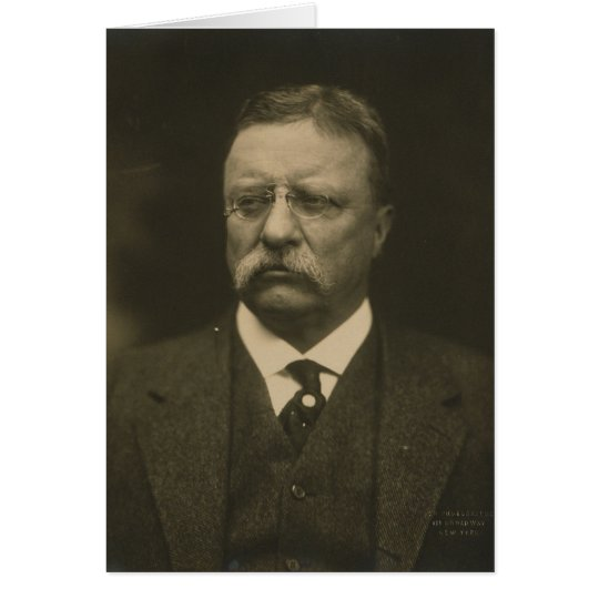 Theodore Roosevelt Portrait by the Pach Brothers Card