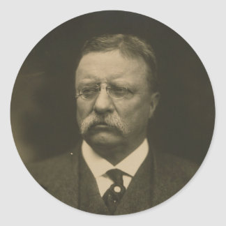 Theodore Roosevelt Portrait by the Pach Brothers Classic Round Sticker