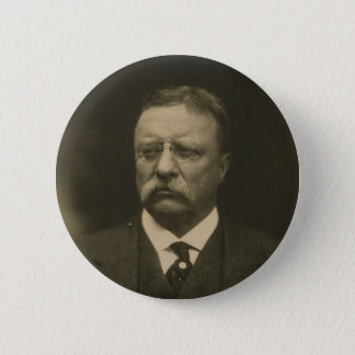 Theodore Roosevelt Portrait by the Pach Brothers Pinback Button