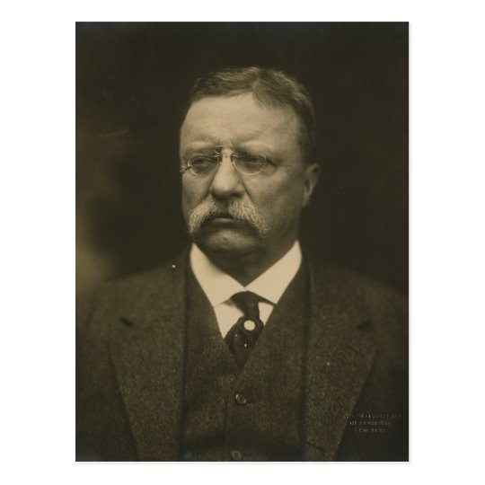 Theodore Roosevelt Portrait by the Pach Brothers Postcard