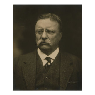 Theodore Roosevelt Portrait by the Pach Brothers Poster