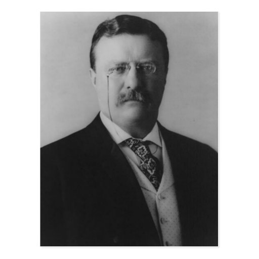 Theodore Roosevelt Portrait Postcard