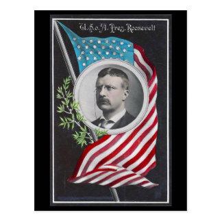 Theodore Roosevelt Postcard