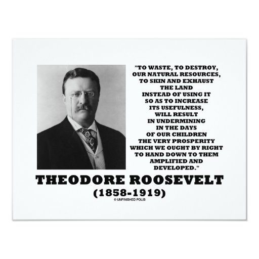 Theodore Roosevelt Waste Destroy Natural Resources 4.25x5.5 Paper Invitation Card