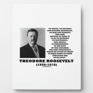 Theodore Roosevelt Waste Destroy Natural Resources Plaque