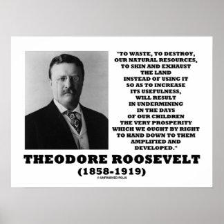 Theodore Roosevelt Waste Destroy Natural Resources Poster