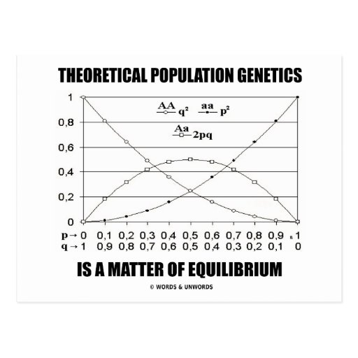 Theoretical Population Genetics Matter Equilibrium Postcard