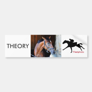 Theory Bumper Sticker