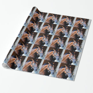 Theory Wrapping Paper