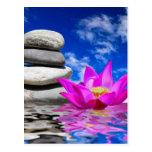 Therapy Rock Stones & Lotus Flower Postcard