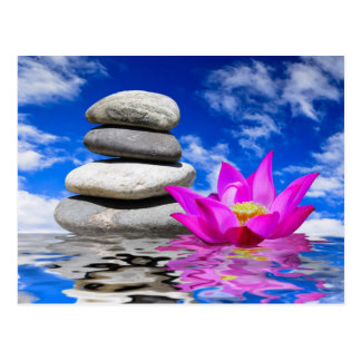 Therapy Rock Stones & Lotus Flower Postcards
